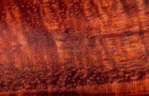 Curly Koa wood
