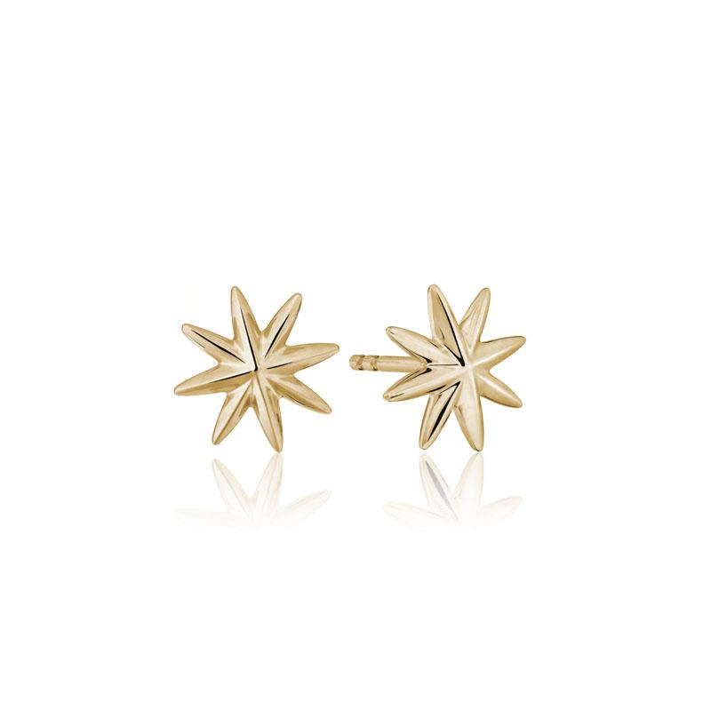 Star Wall Stud Earrings