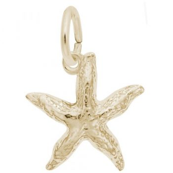 0533 - 241928 - Starfish Charm