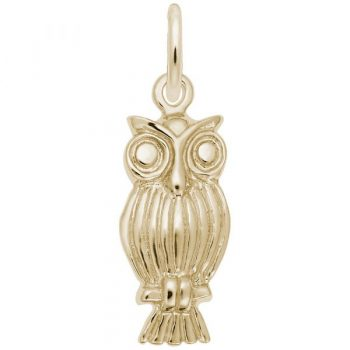 0890 - 242103 - Owl Charm