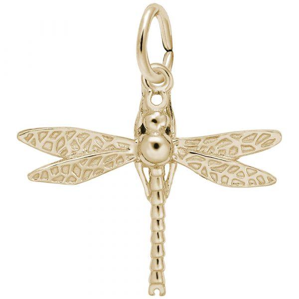 3693 - 241048 - Dragonfly Charm